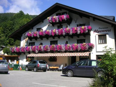Pension Alpenrose ***
