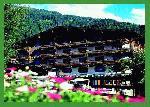 AlpinParadies Hotel Glemmtalerhof