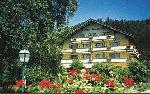 Hotel Montana * * *