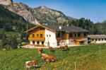 Hotel - Pension Weningeralm