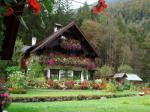 Blumenhaus Ebner - Ferienwohnung