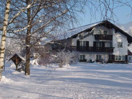 Appartement Ferienwohnung Ferienwohnung Alpenhof _winter