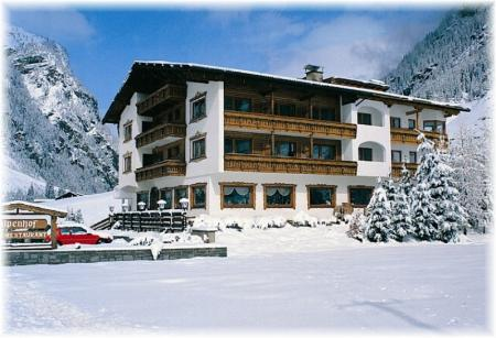 Hotel Alpenhof_winter
