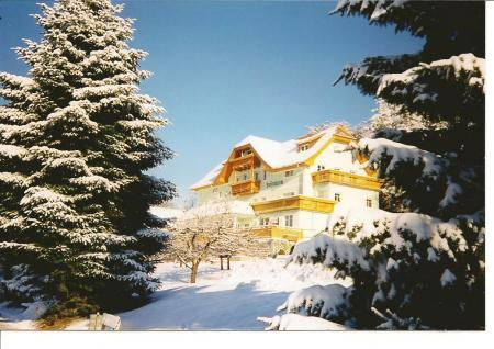 pension Pension Luisenheim_winter