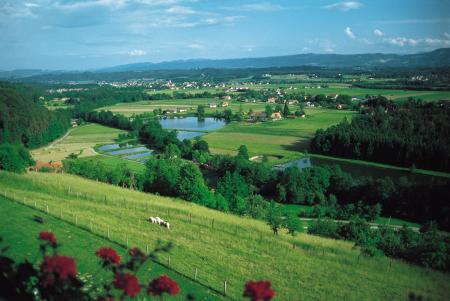 Berghof-Vital St. Peter im Sulmtal
