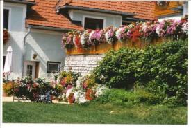 Bed & Breakfast Pension Luisenheim