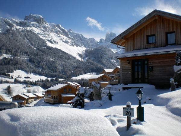 Active winter holiday in ramsau am dachstein