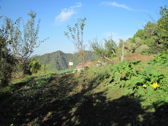 Agriturismo Biologico